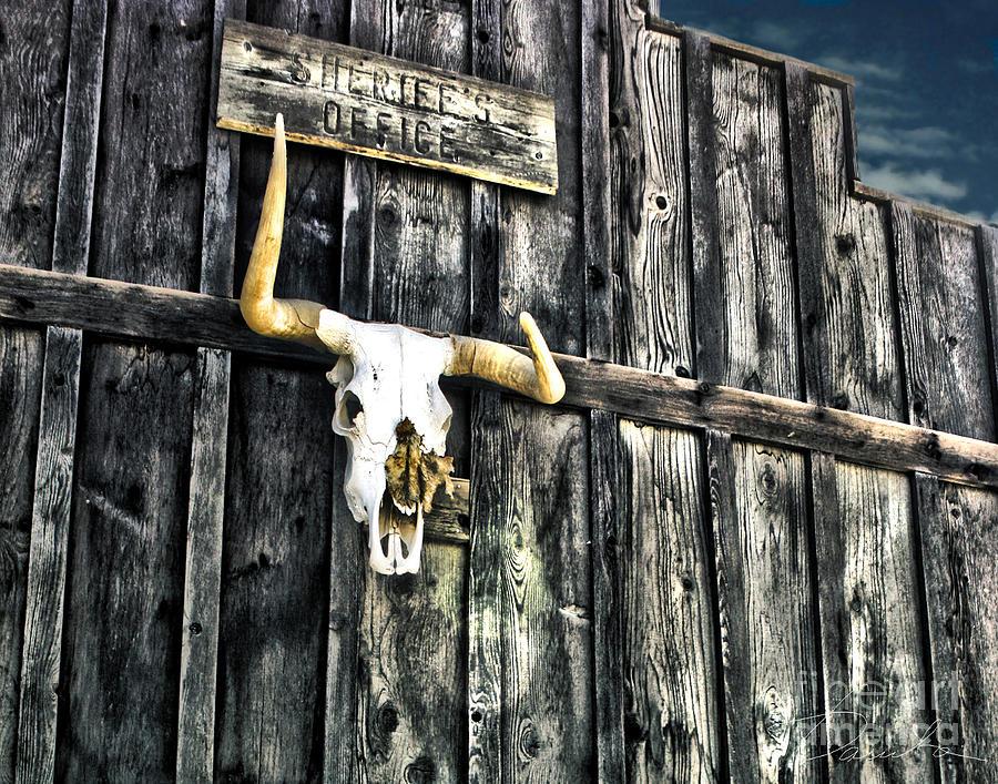 Skull Photograph - Skull by Danuta Bennett