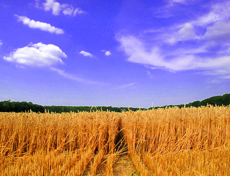 Abstract Photograph - Sky Over The Field 3 Ae  by Lyle Crump