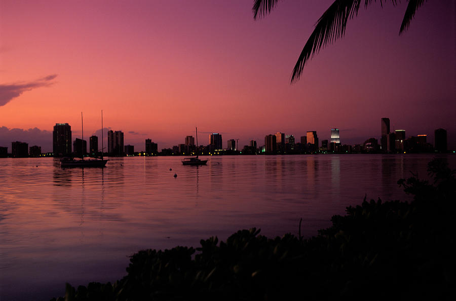 Skyline At Sunset In Miami Florida Photograph By Amanda Clement