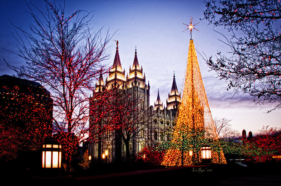Templephotographs Photograph - Slc Temple Tree Light by La Rae  Roberts