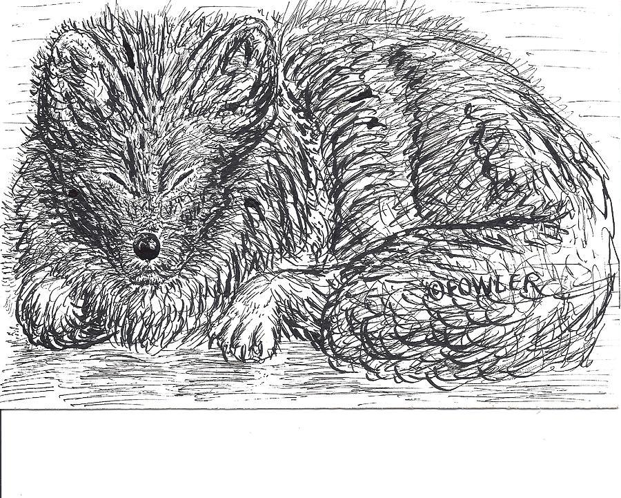 Arctic Fox Drawing - Sleepy Fox by John A Fowler