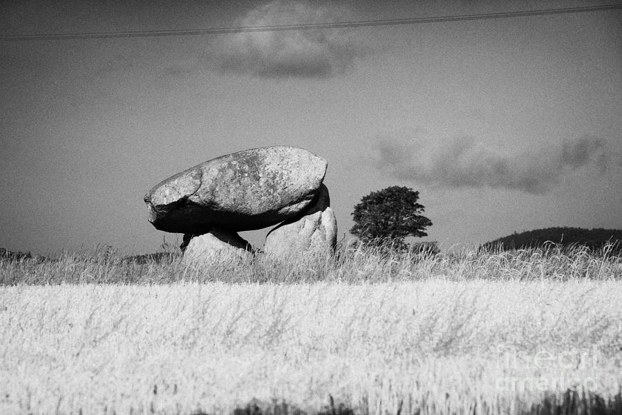Dolmen Photograph - Slidderyford Or Wateresk Dolmen Situated In The Middle Of A Field Of Barley In County Down Northern  by Joe Fox