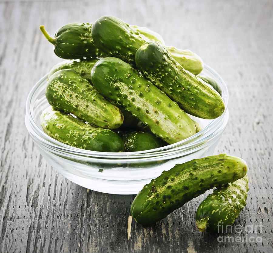 Cucumbers Photograph - Small Cucumbers In Bowl by Elena Elisseeva