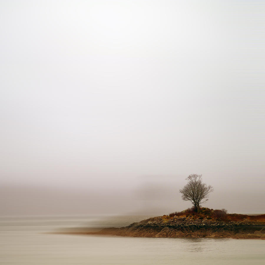 Square Photograph - Small Island With Lone Tree by Andrew Lockie