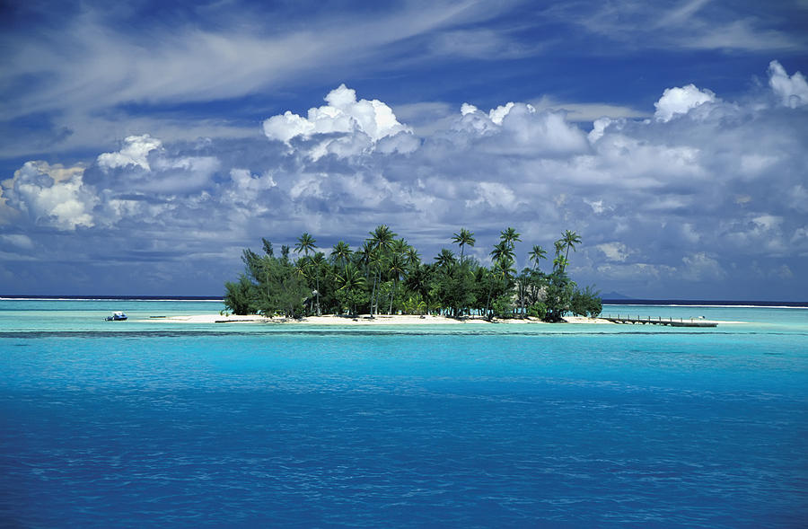 Small Palm Tree Covered Tropical Island Photograph By