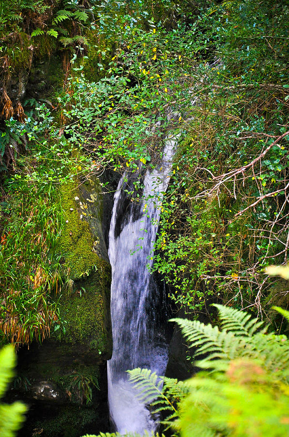 Landscape Photograph - Small Waterfall by Erica McLellan