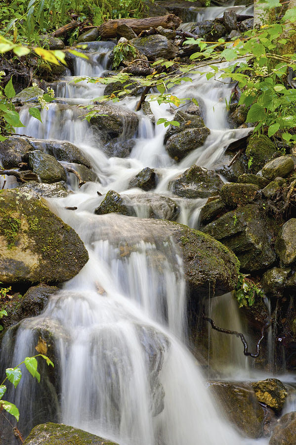 Blur Photograph - Small Waterfalls And Brook West Bolton by David Chapman