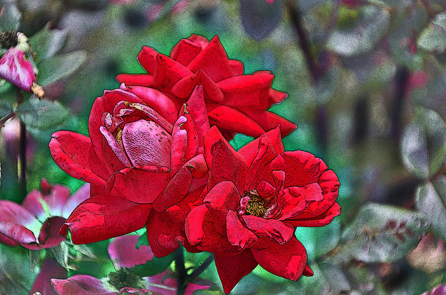 Rose Photograph - Smell The Roses by Paul Mashburn