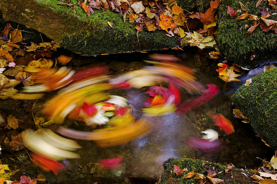 Fall Photograph - Smoky Mountain Whirlpool by Rich Franco