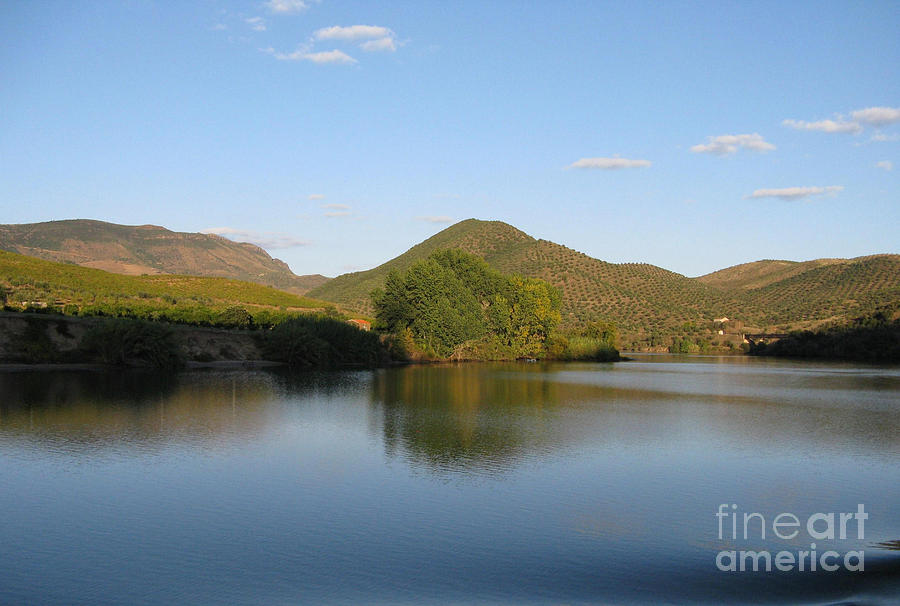 Nature Photograph - Smooth Sailing On The Douro by Arlene Carmel
