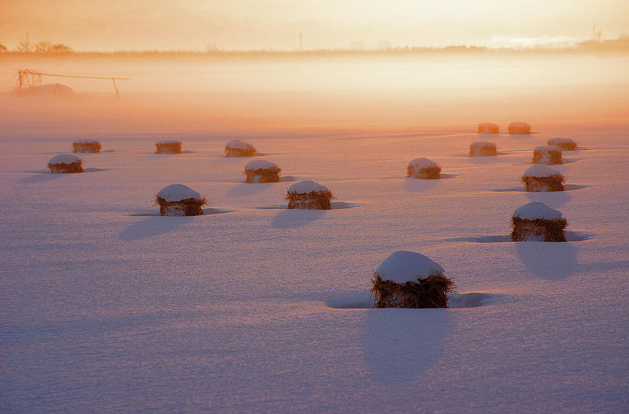 Horizontal Photograph - Snow-covered Rice Fields by The landscape of regional cities in Japan.