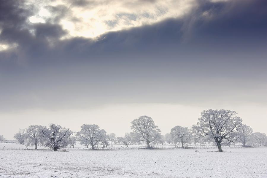 Cloud Photograph - Snow Covered Trees And Field by John Short