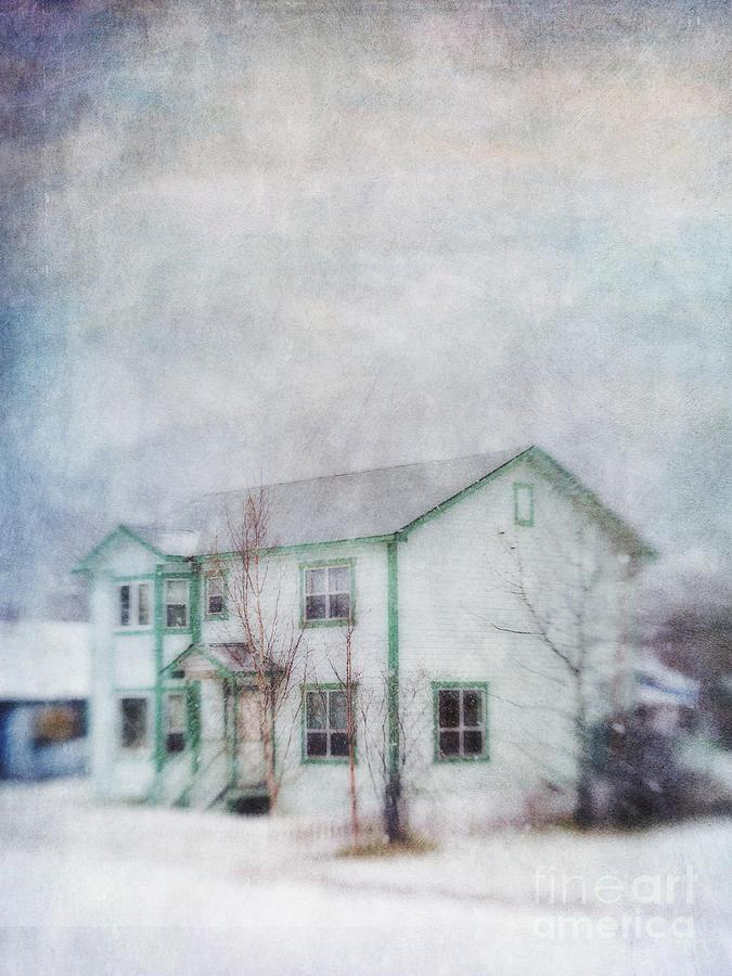 Canada Photograph - Snow Flurry round My Neighbors House by Priska Wettstein