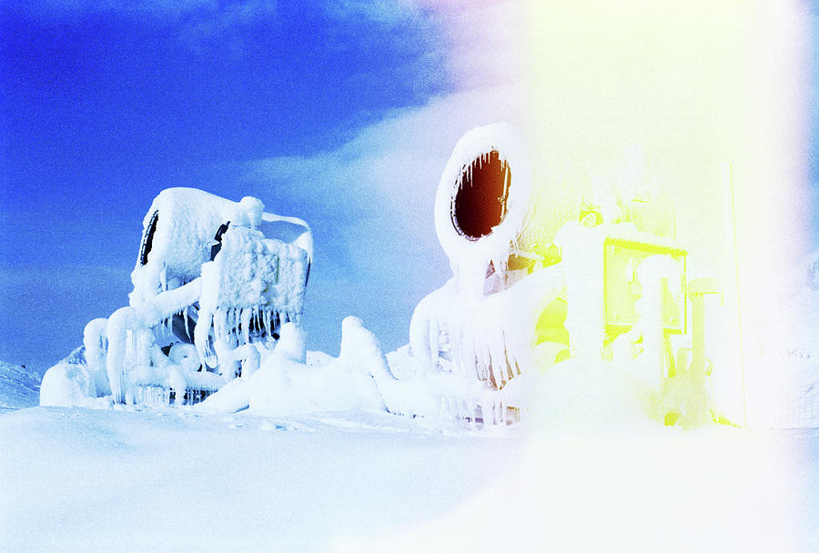 Snow Monsters Photograph