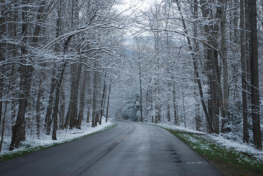 Snow Photograph - Snow On The Road by Carrie Munoz
