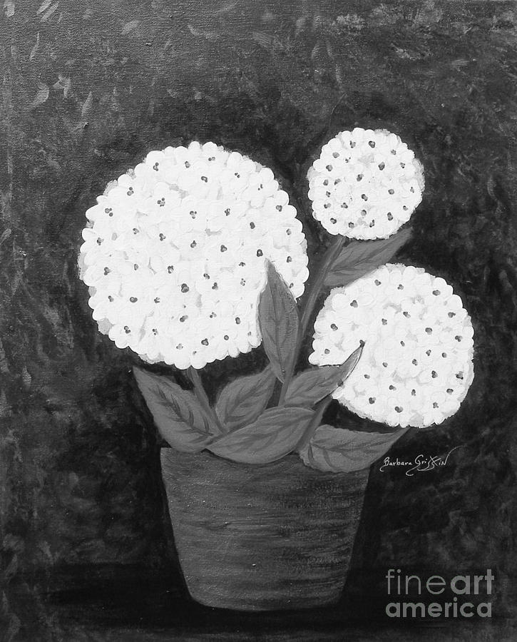 Snowball Plant Painting - Snowball Plant B W by Barbara Griffin