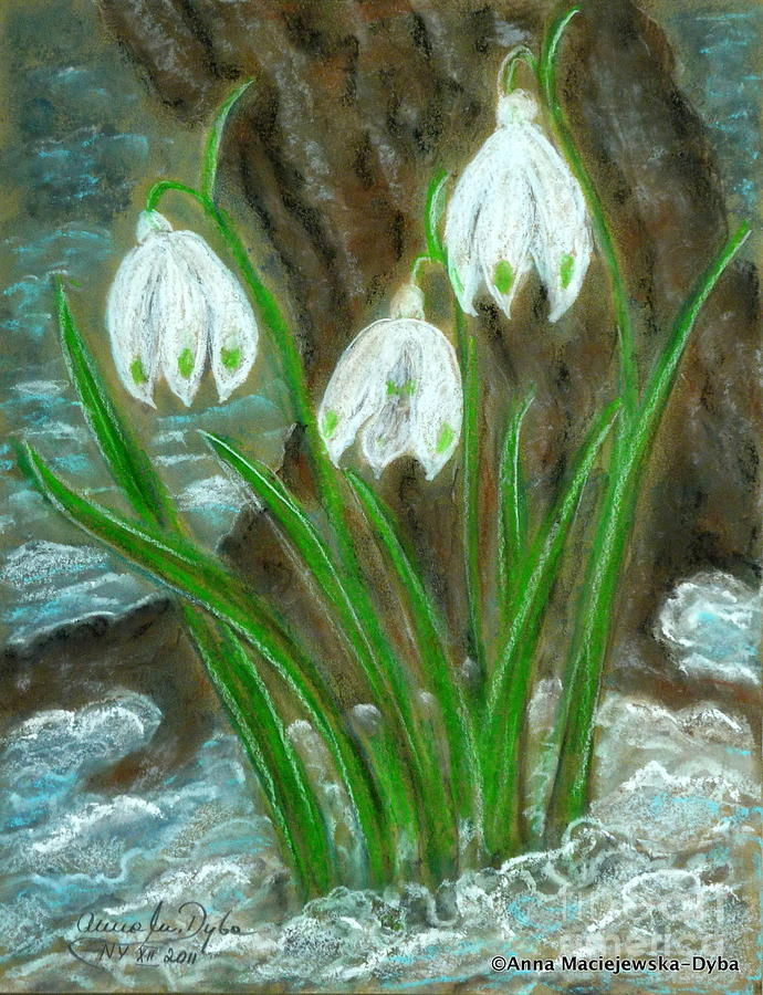 Snowdrops Painting - Snowdrops by Anna Folkartanna Maciejewska-Dyba
