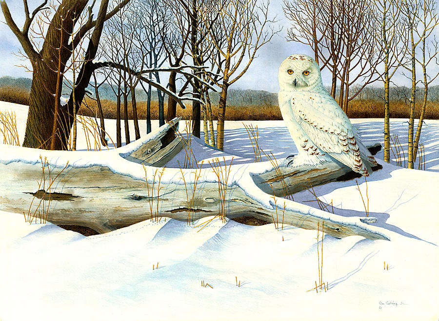 Mouse Painting - Snowy Owl And Mouse by Bill Gehring