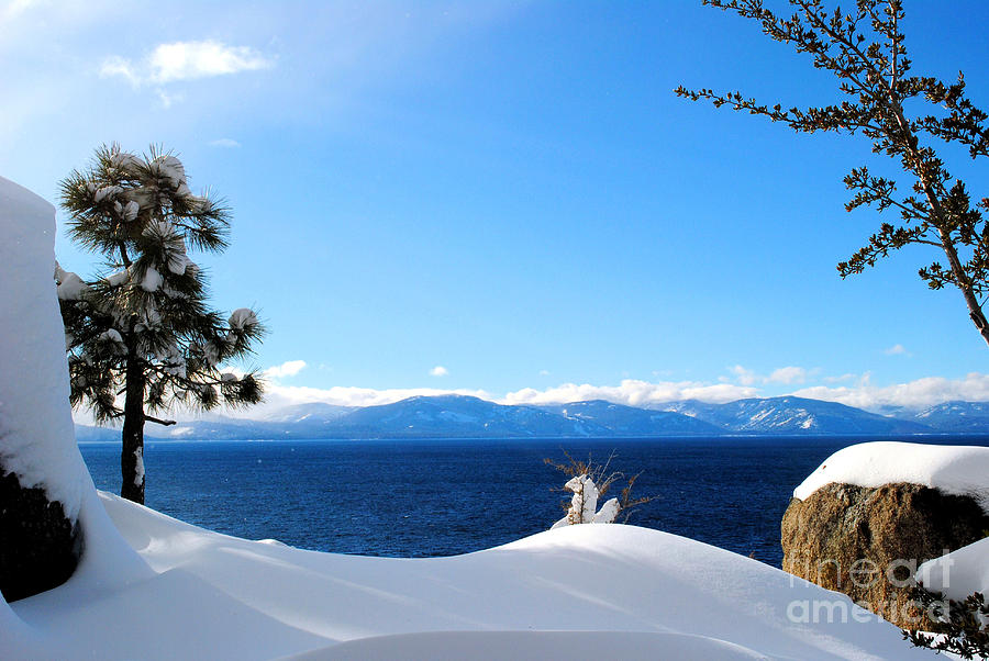 Lake Photograph - Snowy Tahoe by Sean McGuire