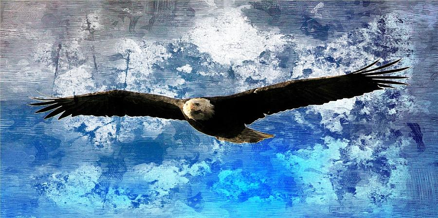 Bald Eagle Digital Art - Soaring by Carrie OBrien Sibley