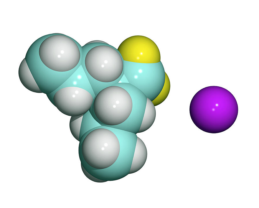 Molecule Photograph - Sodium Valproate, Anti-epilepsy Drug by Dr Tim Evans