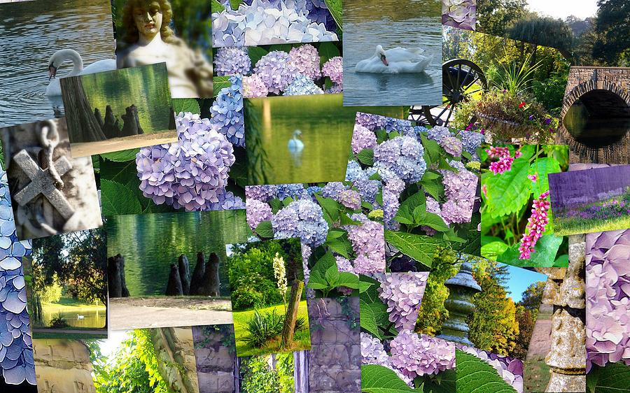 Collage Photograph - Soft Lavender by Sherry  Kepp