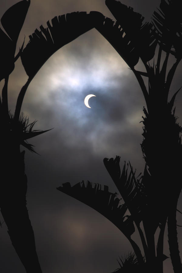 Amazing Photograph - Solar Eclipse II by Tomas del Amo
