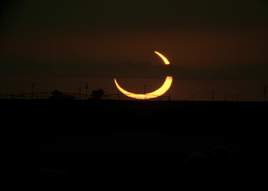 Eclipse Photograph - Solar Eclipse In Lubbock Texas by Melany Sarafis