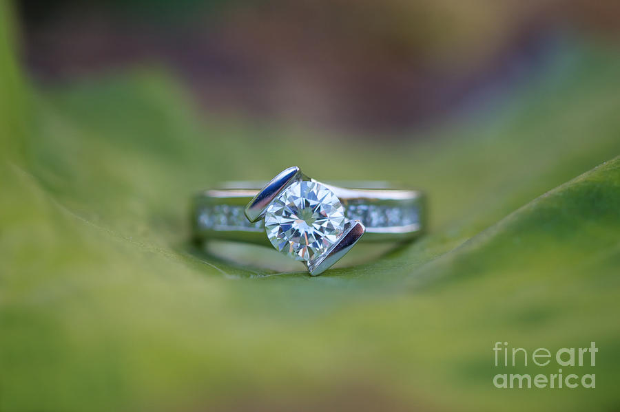 Solitaire Diamond Photograph - Solitaire On Leaf by Brooke Roby