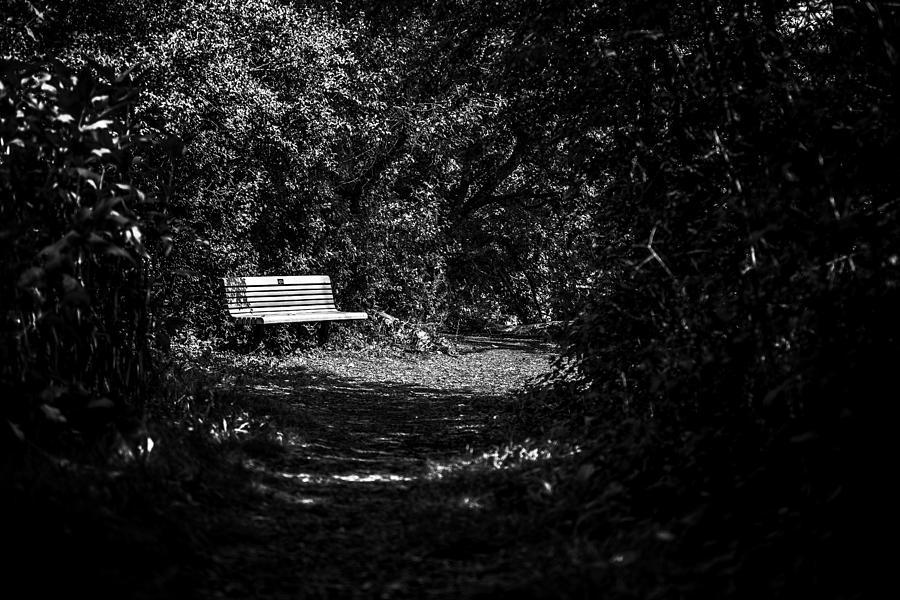 Cj Schmit Photograph - Solitude by CJ Schmit