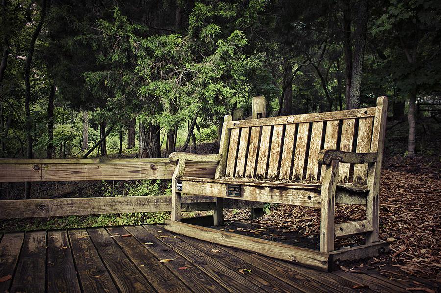 Farm Photograph - Solitude by Elizabeth Wilson