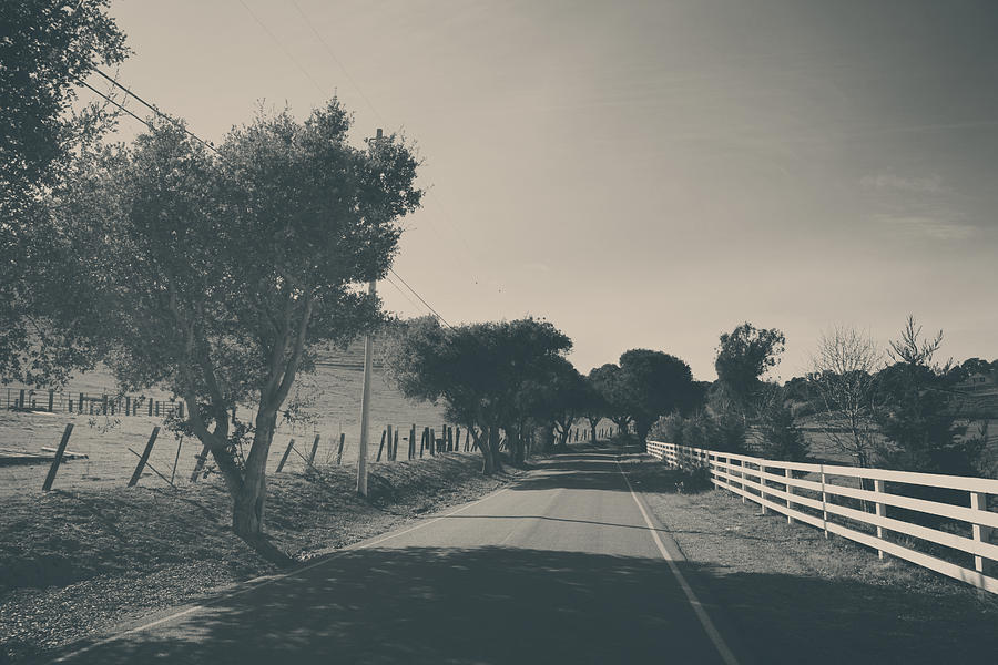 Sunol Photograph - Somethin About You And I by Laurie Search