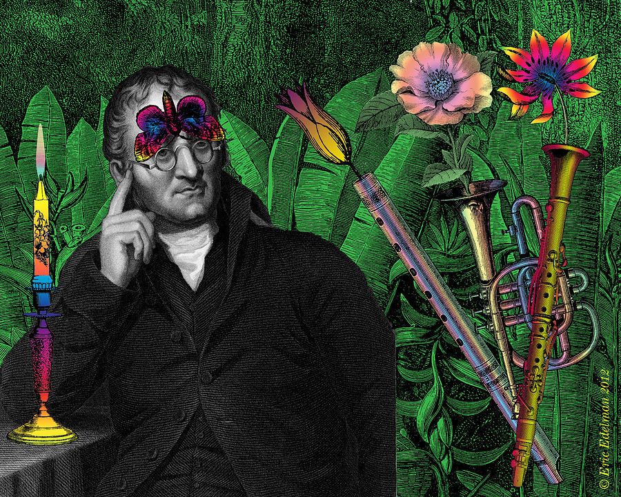Digital Collage Digital Art - Song Of Nature by Eric Edelman