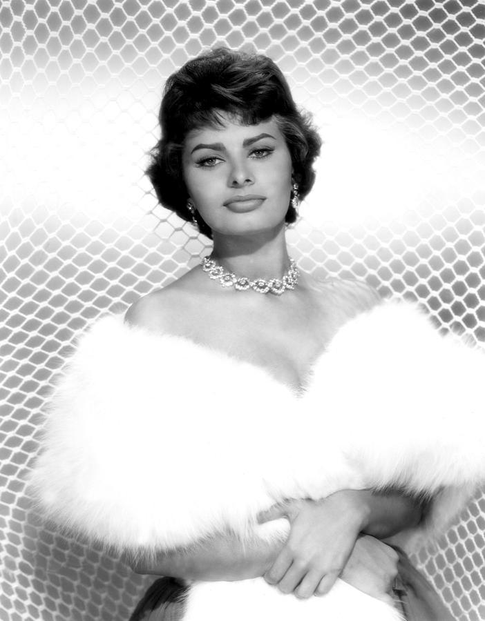 Sophia Loren, As Seen In The Film Photograph by Everett