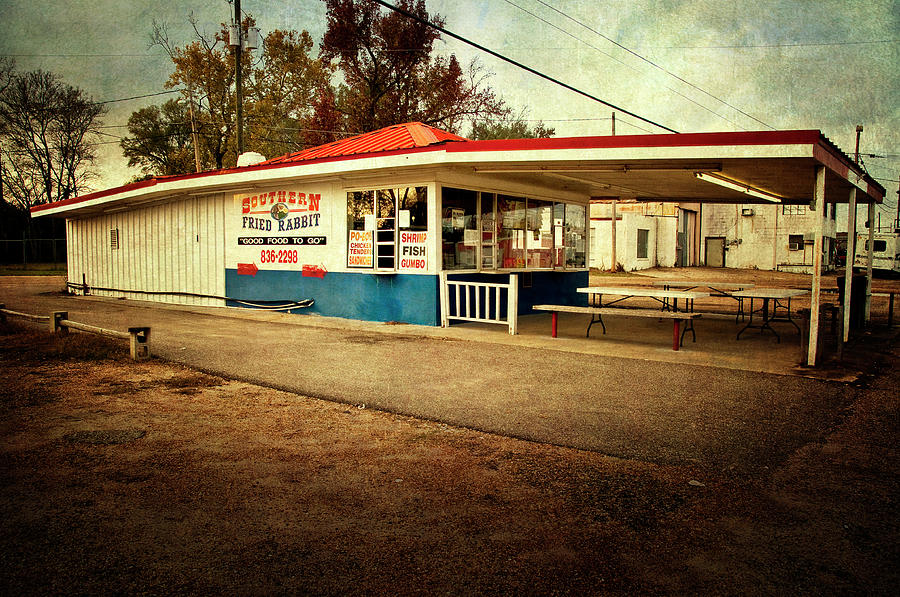South Photograph - Southern Fried Rabbit by Tamyra Ayles