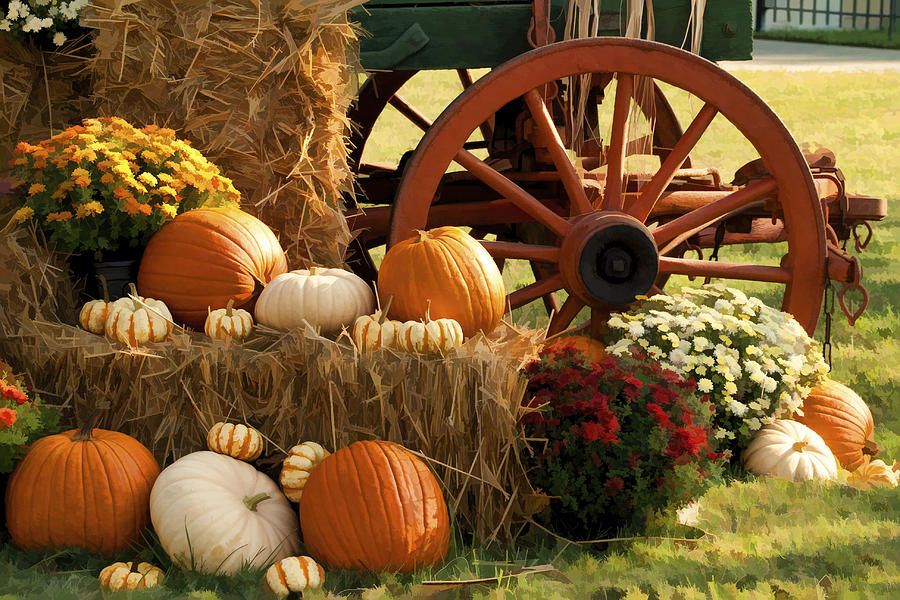Harvest Photograph - Southern Harvestime Display by Kathy Clark