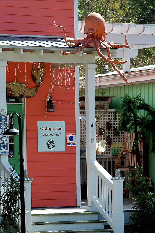 Octopuses Photograph - Souvenir Gift Shop by Kathy Gibbons