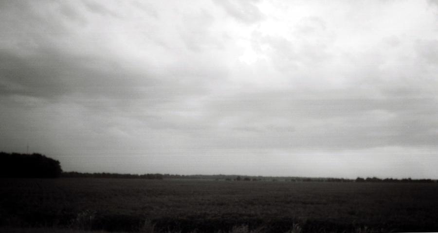 Louisiana Photograph - Soybean Field- Richland Parish- Louisiana.  by Doug Duffey