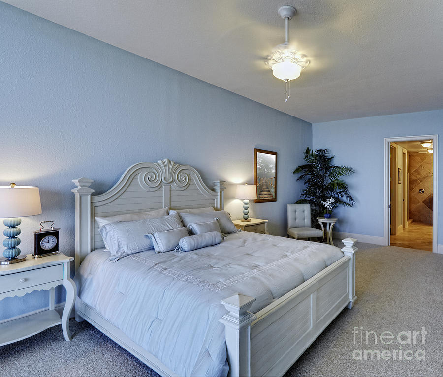 Architectural Design Photograph - Spacious Bedroom by Skip Nall