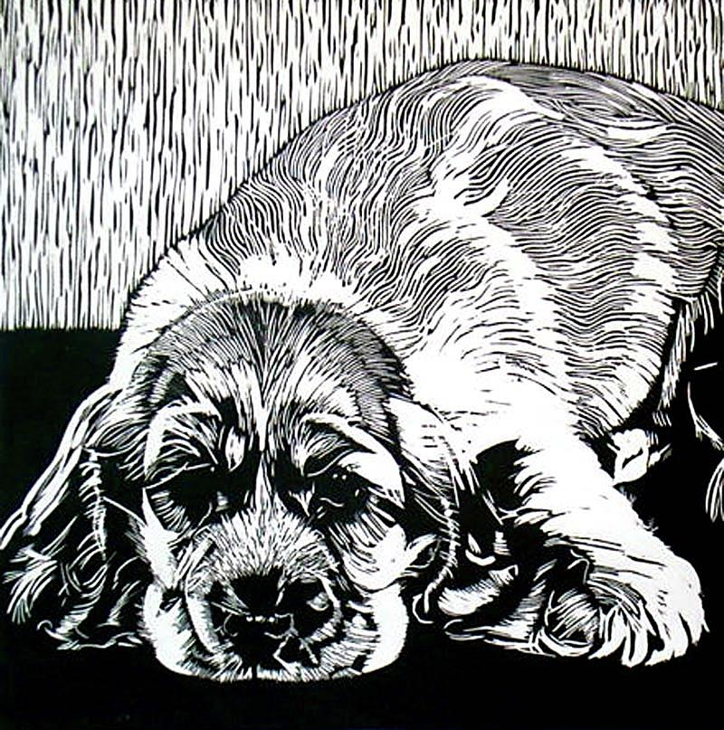 Graphic Relief - Spaniel by Sabrina McGowens