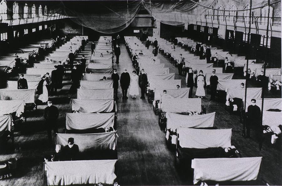 the 1918 1919 influenza epidemic essay