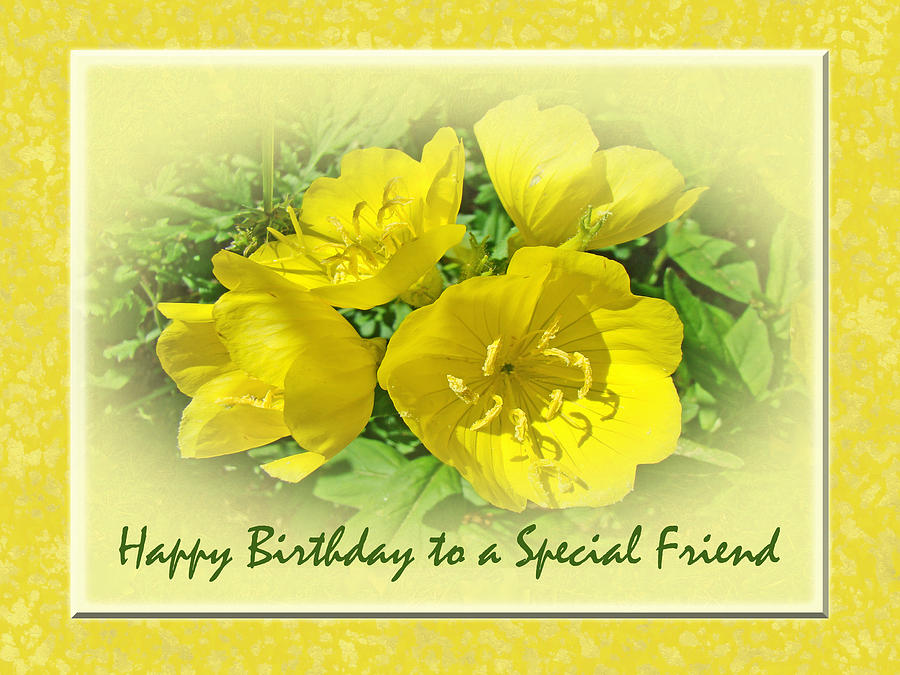 Special friend birthday greeting card yellow primrose photograph birthday photograph special friend birthday greeting card yellow primrose by mother nature m4hsunfo