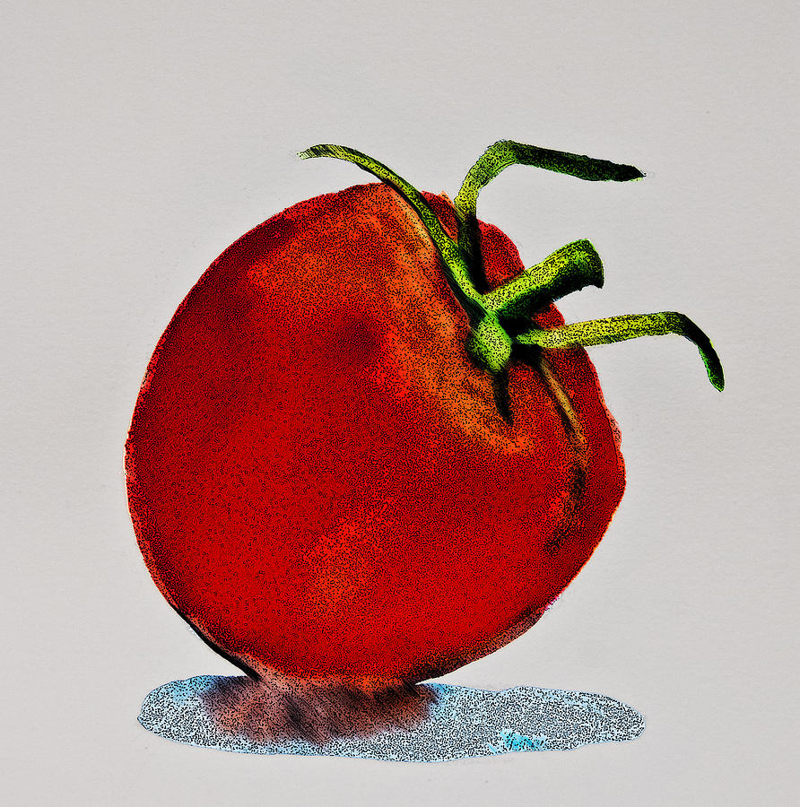 Food Pictures Digital Art - Speckled Tomato by Jani Freimann