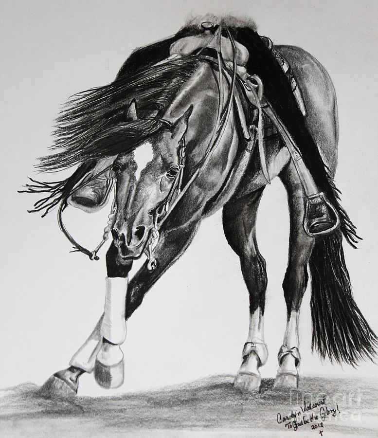 Arabian Drawing - Spinner by Carolyn Valcourt