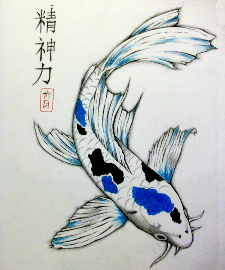 Spiritual strength koi drawing by matt greganti for Koi fish pond drawing