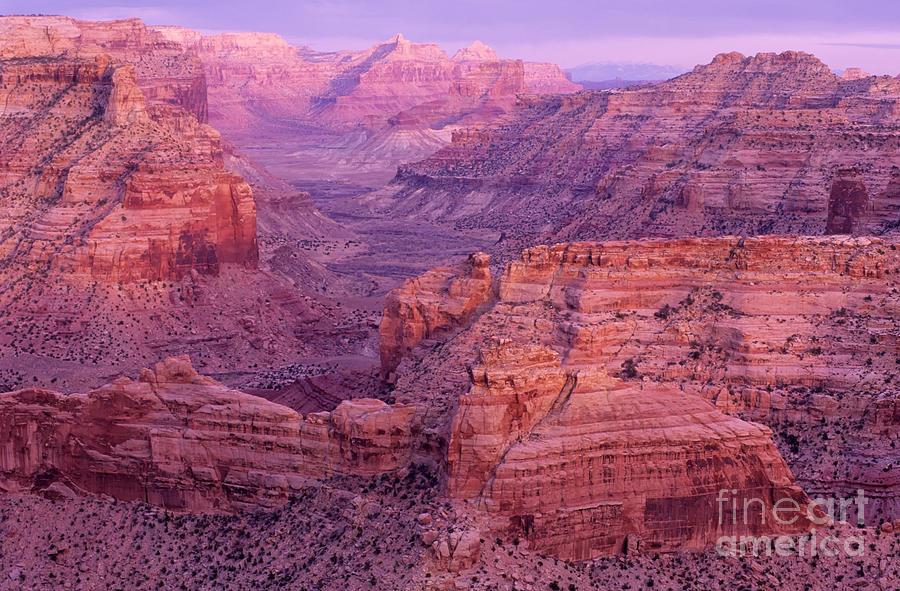 Utah Photograph - Splendor Of Utah by Bob Christopher