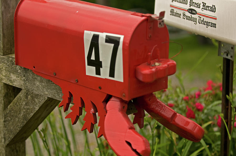 Maine Coast Photograph - Sponge Bobs Mail Box  by Paul Mangold