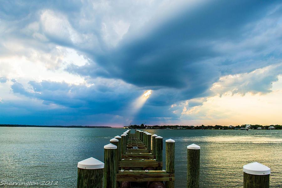 Dock Photograph - Spotlight by Shannon Harrington
