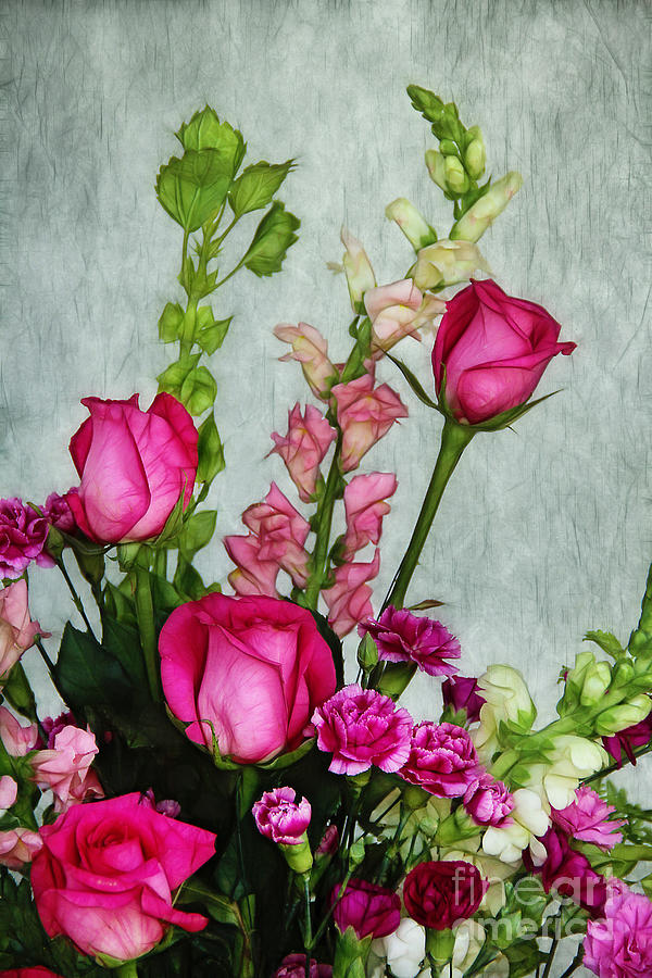 Roses Photograph - Spray Of Flowers by Judi Bagwell