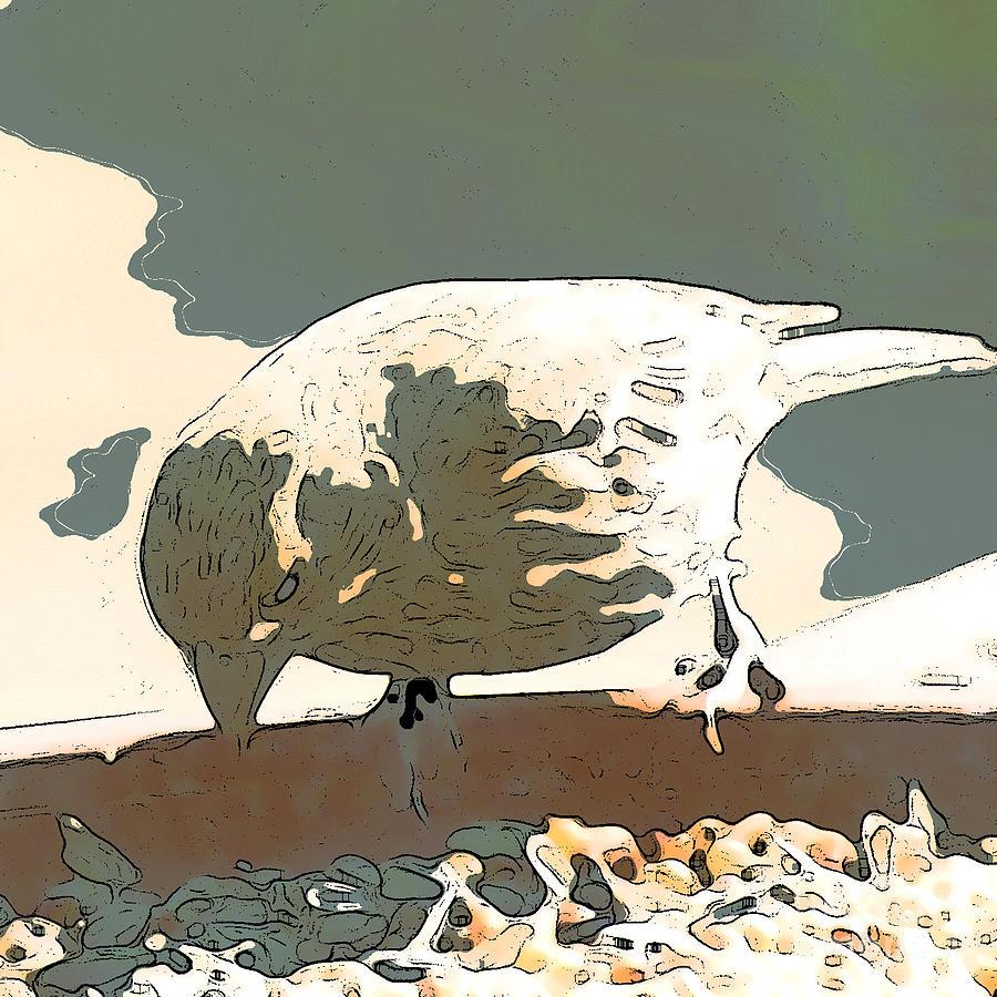 Bird Digital Art - Spring Bird by Artist and Photographer Laura Wrede